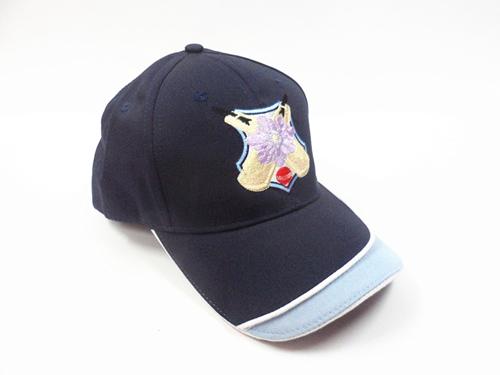 时尚棒球帽¶••⊿运动帽¶••⊿高尔夫帽