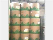 山东彩色胶版纸专业厂家 山东彩色胶版纸