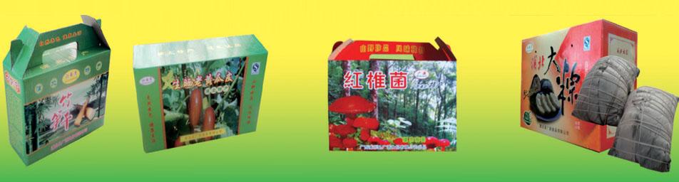 廣西浦北縣食品有限公司