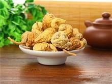 广东价格优惠的黄玛咖 推荐,玛咖种植