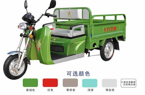 力驼电器-口碑好的力之星电动三轮车供应商 电动货运三轮车