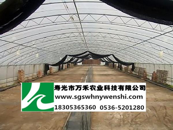 立柱拱棚采用镀锌钢管做骨架代替众多水泥立柱支撑棚体,顶部呈圆弧形