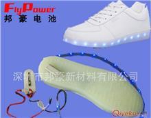 3.7V 450mAh 七彩发光鞋电池套装 鞋灯电池 灯带电池 锂聚合物电池