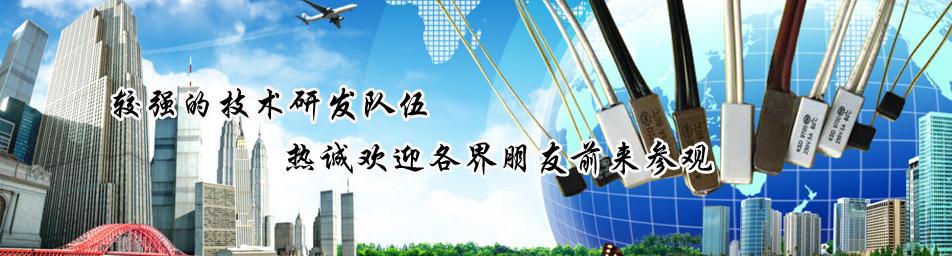 中山市超英熱保護器有限公司