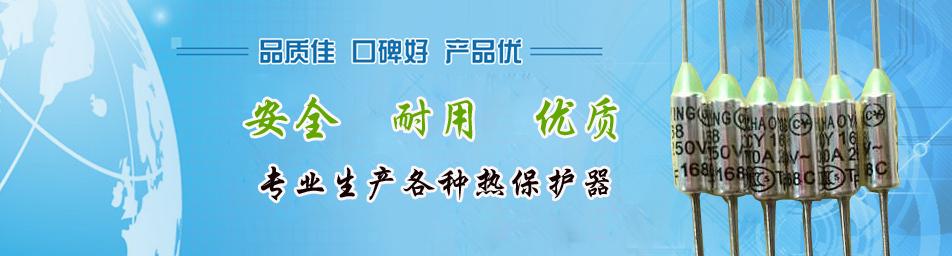 中山市超英热保护器有限公司